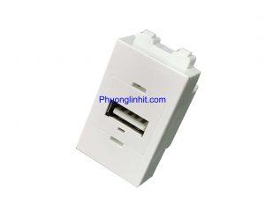 Nhân ổ cắm USB loại cắm thẳng, chuẩn Wide lắp mặt Panasonic